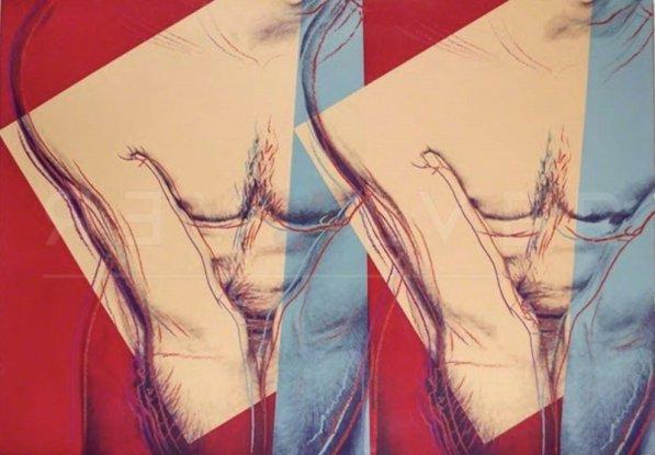 andy-warhol-torso-double-fs-iiia35-800x800